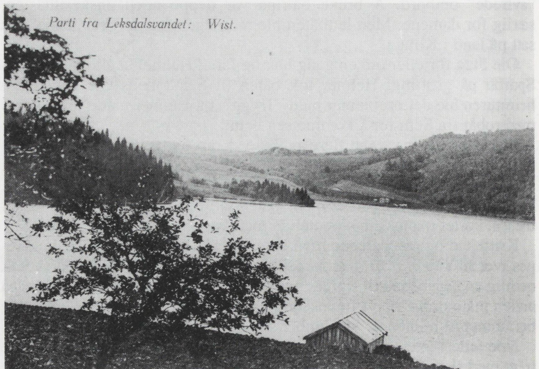 Parti fra Leksdalsvatnet, Wist Fra Verdal historielags skrifter 18 - 1991